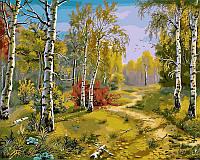 Картина по номерам DIY Babylon Тропинка в лесу худ Цыганов, Виктор (VP180) 40 х 50 см