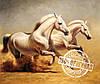 Набор для рисования MENGLEI Белые лошади худ. Смородинов Руслан (VS002)