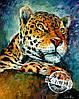 Раскраска по номерам MENGLEI Леопард худ. Афремов Леонид (VS025)