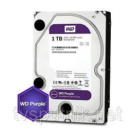 """Жёсткий Диск Western Digital Purple HDD 1TB (3.5"""")"""