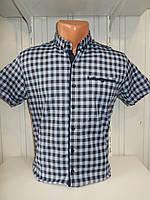 Рубашка мужская CORM короткий рукав, клетка, стрейч котон 006 \ купить рубашку оптом.