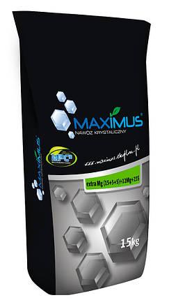 Микроудобрение Максимус Экстра Мg - 15 кг, фото 2