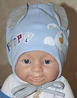 Демисезонная шапка для мальчика Тимка, 38, 40, 42, 44 размер, Климани