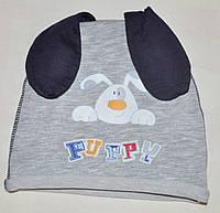 Демисезонная шапка для мальчика Догги, 40, 42 размер, Климани