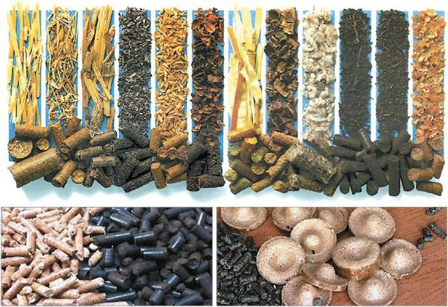 Пеллеты, гранулы топливные из лузги подсолнечника, дуба, сосны: экспорт, доставка по украине
