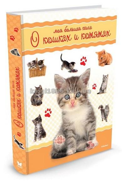 Енциклопедія для дітей подарункова   Моя большая книга про кішок і кошенят   Наталі Кое   Махаон