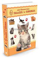 Энциклопедия для детей подарочная | Моя большая книга о кошках и котятах | Натали Коэ | Махаон