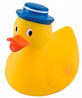 Игрушка-пищалка для купания Утка - 2/990, Canpol babies, утка в синей шляпе (2/990-2)