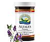 Alfalfa / Альфальфа • Люцерна полевая