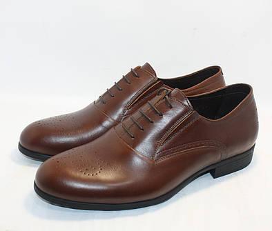 Туфли  классические коричневые Ikos