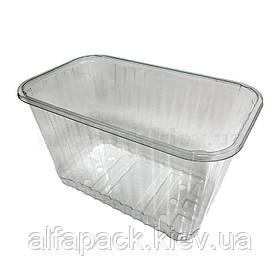 Лоток пластиковый для ягод фруктов и овощей 186х114х105 мм