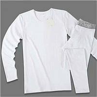 Мужское Нательное Термо Белье Calvin Klein - кофта и штаны на широкой резинке Цвет Белый M L XL реплика