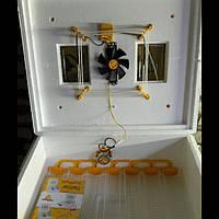 Автоматический инкубатор Теплуша с вентилятором теновый ИБ - 63