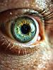 Black Eye macro 20x, линза на телефон, объектив на смартфон, фото 4