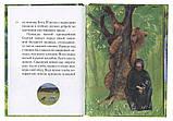 Житіє преподобного Сергія Радонезького у переказі для дітей. Ткаченко Олександр, фото 4