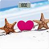 Весы Scarlett SC-BS33E076(Скарлетт)