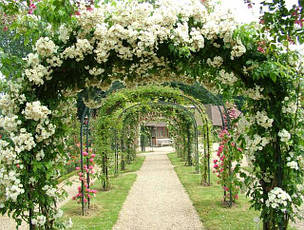 Перголы, садовые арки, кронштейны для кашпо