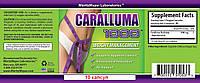 Караллума Фимбриата (Caralluma Fimbriata ) 2000 mg. Жиросжигатель, подавитель аппетита. Пробник