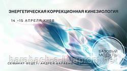 """""""Энергетическая коррекционная кинезиология. Базовый модуль"""""""