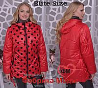 481c53089a8f Яркая женская куртка деми большого размера Производитель Украина прямые  поставки фабрики р.54-64