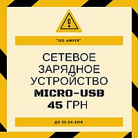 До 30 апреля 2018 зарядка с кабелем  micro USB ТМ iChargeза 45 грн