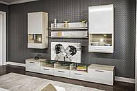 Гостиная «Денвер» Мир Мебели