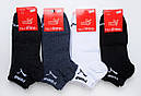 Низькі чоловічі шкарпетки Спорт розмір 27-29, фото 6