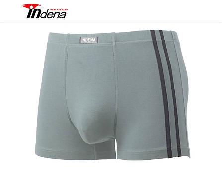 Чоловічі стейчевые боксери (батал) «INDENA» Арт.75201, фото 2