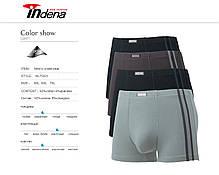 Мужские стейчевые боксеры (батал) «INDENA» Арт.75201, фото 3