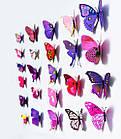 Бабочки 3D  голубые, набор 12 штук, фото 2