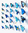 Бабочки 3D  голубые, набор 12 штук, фото 6