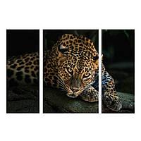 "3-х Модульная картина на холсте ""Леопард на черном"" 110х70см"