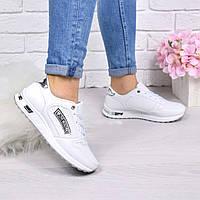 Кроссовки женские Moschino белый + серебро 4513, спортивная обувь, фото 1