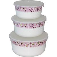 Набор емкостей с крышкой (19 см, 17 см, 14 см) Цветение сакуры