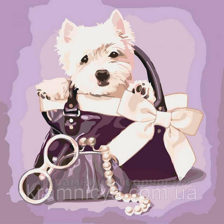 Картина по номерам Любимый щенок, 40х40 (КНО4033)