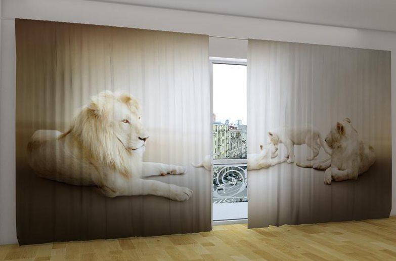 Панорамная фотоштора Белые львы