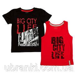 Комплект футболок для мальчика