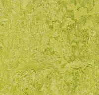 Натуральный линолеум Marmoleum Real Forbo 3224