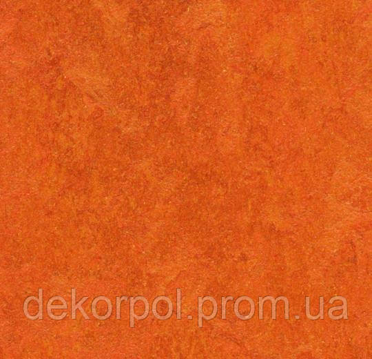 Натуральный линолеум Marmoleum Real Forbo 3126