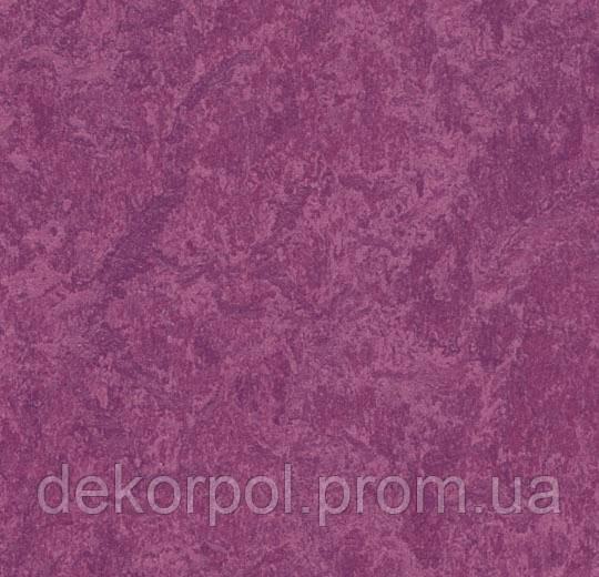 Натуральный линолеум Marmoleum Real Forbo 3245