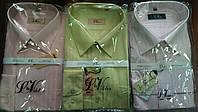 Рубашка мужская ассортимент