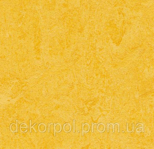 Натуральный линолеум Marmoleum Real Forbo 3251