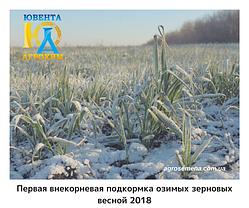 Первая внекорневая подкормка озимых зерновых весной 2018