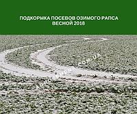 Подкормка посевов озимого рапса весной 2018