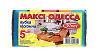 """Губка кухонная """"Макси Одесса"""" 5 шт"""
