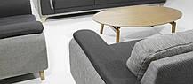 Диван Toby 2 Seater (AVANT-GARDE DESIGN ТМ), фото 3