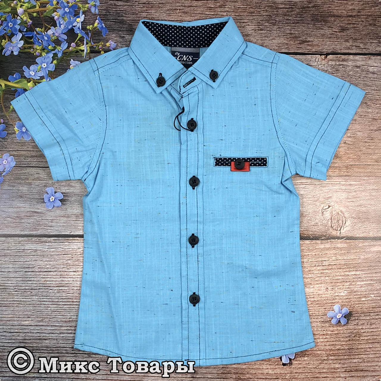 Рубашка с коротким рукавом для мальчика Размеры: 1,2,3,4 года (6346-1)