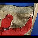 Мінеральна вата Rockwool Rockmin Plus Роквул Рокмін Плюс, фото 3