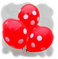 """Воздушные шары """"Полька красная""""  12""""(30 см) пастель В упак: 100шт ТМ """"Gemar"""""""