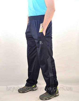 Брюки спортивные мужские - эластик, фото 2